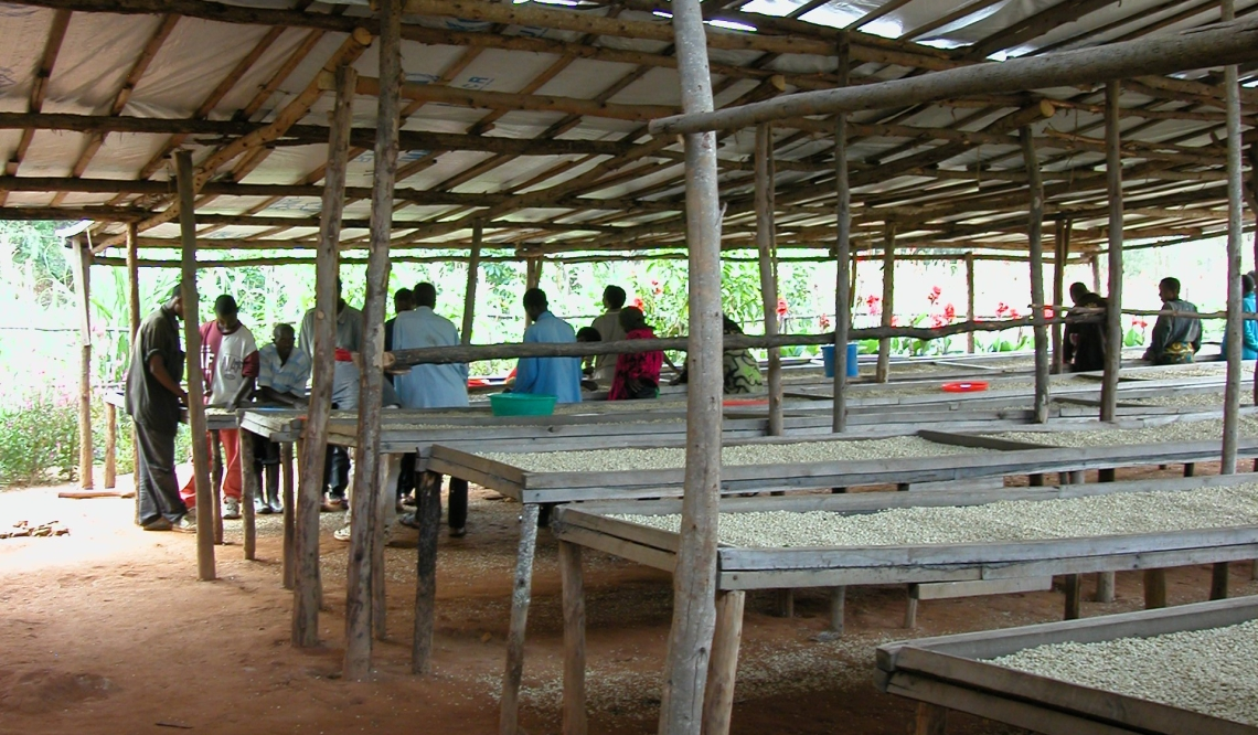 buf drying tables 2004